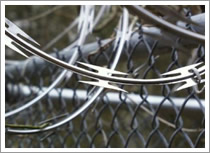 Concertina Wire (Coils)